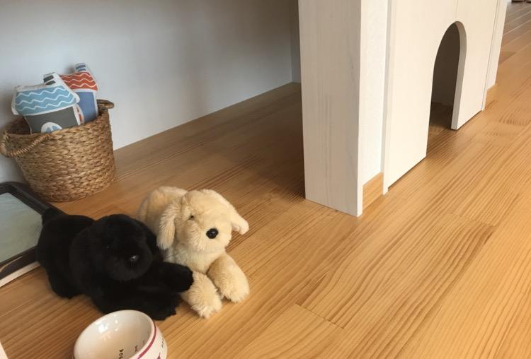 ペットと過ごす家