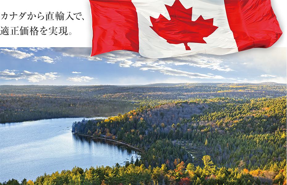 カナダから直輸入で、適正価格を実現。